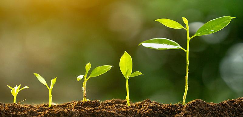développement durable-ateliers porraz
